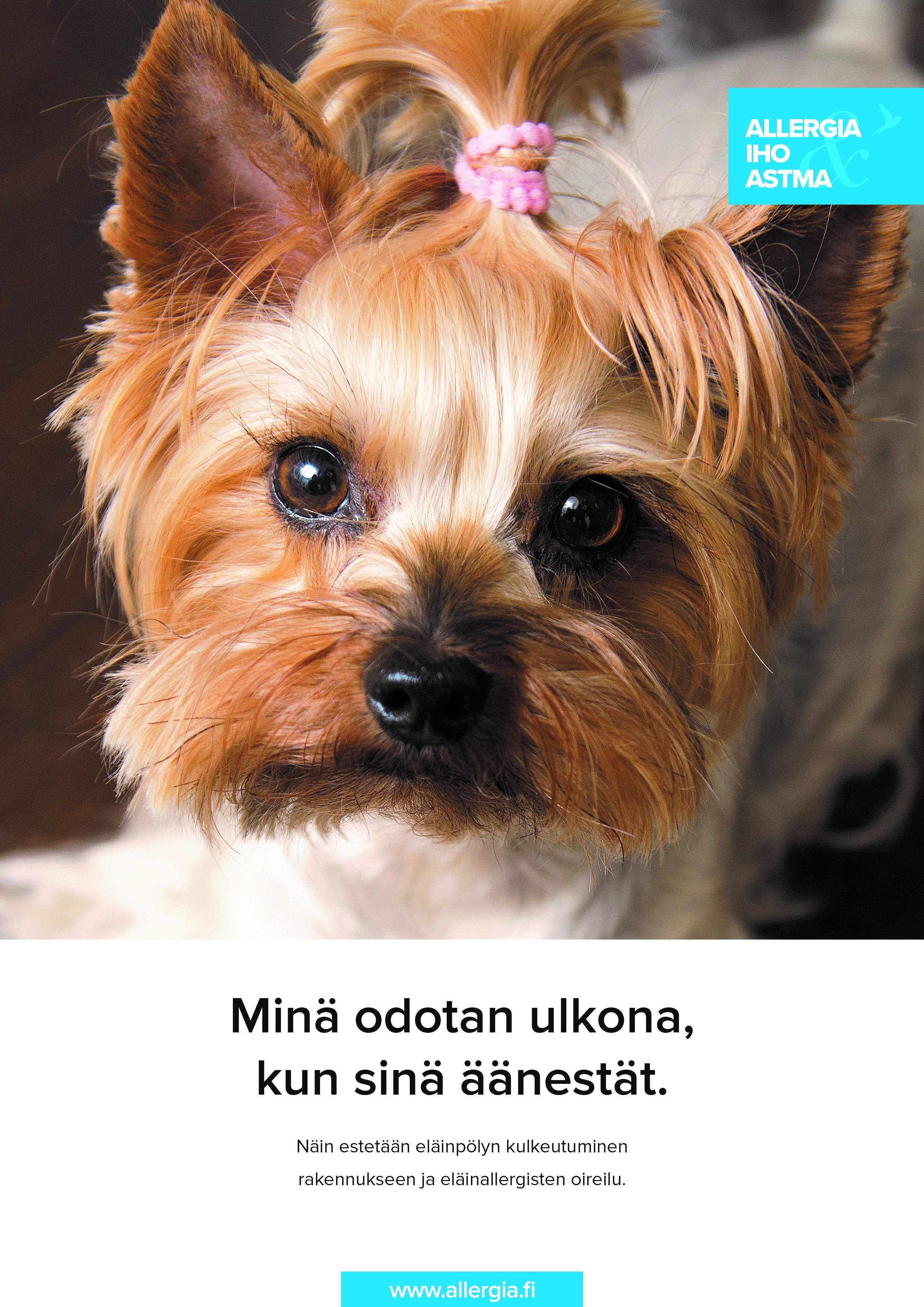 Newsletter01.18 Finnish new presidential election poster